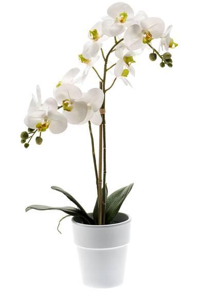 Kunstig Orkide i Potte Hvit 65cm