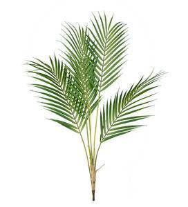 Bilde av Kunstig Chamaedorea Palmeblader 80cm