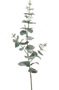 Bilde av Kunstig Eukalyptus Stilk 68cm