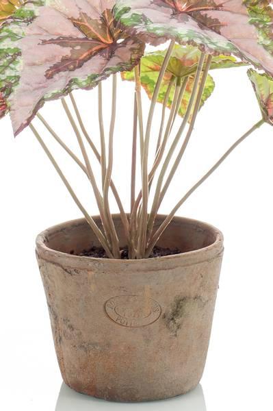 Kunstig Begonia Busk 45cm