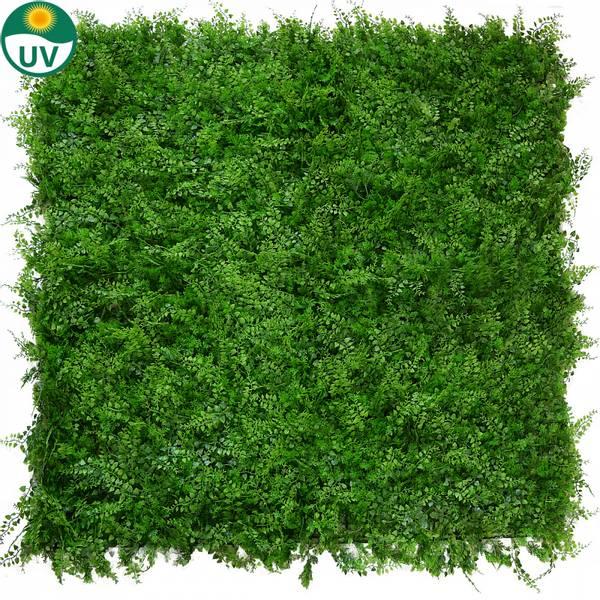 Kunstig Bregne/Tuja Plantevegg Matte UV 50x50cm