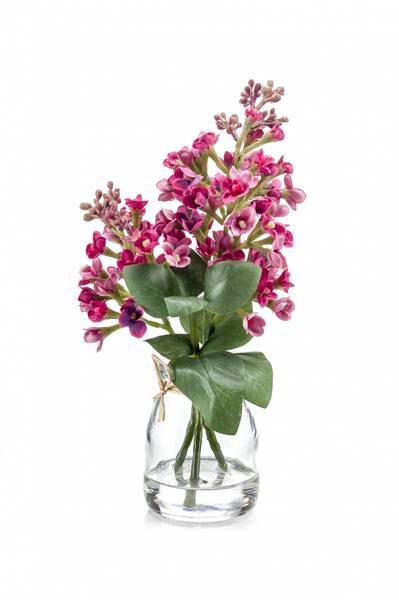 Syrinblomst Beauty i Glass 22cm