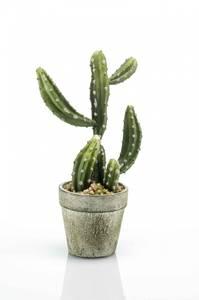 Bilde av Kunstig Kaktus 21cm
