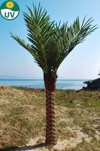 Bilde av Kunstig Kanari Palme UV Beskyttet 300cm