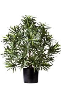 Bilde av Kunstig Podocarpus i Potte 47cm