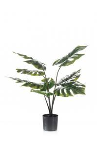 Bilde av Kunstig Monstera Plante 60cm