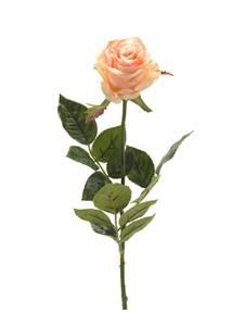 """Bilde av Kunstig Rose """"Simone"""" Fersken 73cm"""