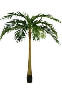 Bilde av Kunstig Majestetisk Palme 270cm