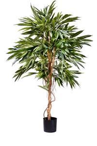 Bilde av Kunstig Longifolia Royal 150cm