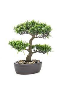 Bilde av Kunstig Podocarpus Bonsai i Potte 32cm