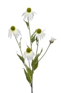 Bilde av Kunstig Solhatt Stilk Hvit 90cm