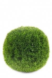 Bilde av Kunstig Gress ball D34cm