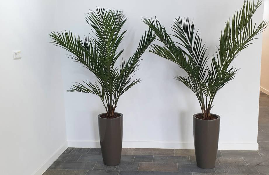 Kunstig Areca Palme Plante 150cm
