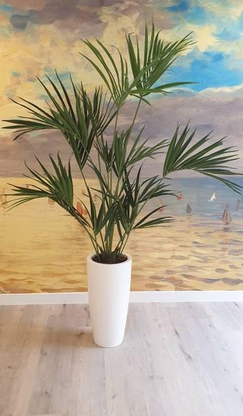 Kunstig Kentia Palme 190cm