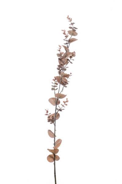 Kunstig Eukalyptus Stilk Brun 115cm