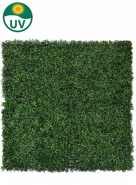 Kunstig Buksbom Plantevegg Matte UV 50x50cm