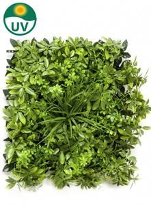Bilde av Kunstig Schefflera Plantevegg Matte UV 50x50cm