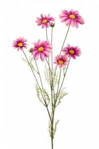 Bilde av Kunstig Kosmos Blomst Beauty 90cm