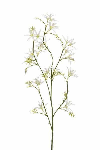 Kunstig Tweedia Blomst Hvit 82cm
