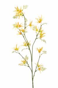 Bilde av Kunstig Tweedia Blomst Gul 82cm