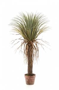 Bilde av Kunstig Yucca Palme 110cm