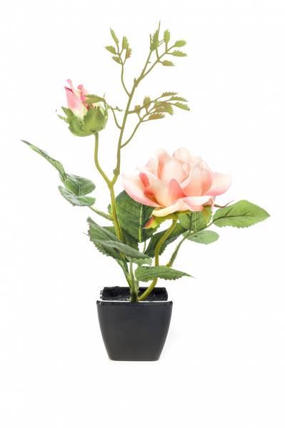 Kunstig Rose Fersken i Potte 25 cm