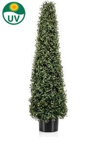 Bilde av Kunstig Buksbom Pyramide Miniblad UV 90cm