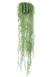 Bilde av Kunstig Hengende Senecio i Potte 70cm