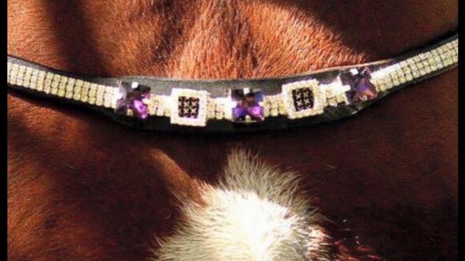 Bilde av  Lilac Edition