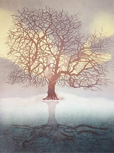 Bilde av Calina Pandele Yttredal kunstkort THE WORLD TREE