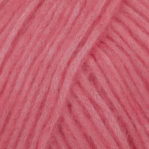Bilde av rose uni colour 20