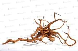 Bilde av Aquadeco Red Moor Wood Mini