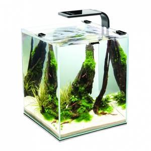 Bilde av AquaEl Shrimpset Smart 2 10l Svart