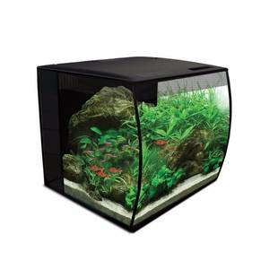 Bilde av Fluval Flex aquarium kit 34L Black