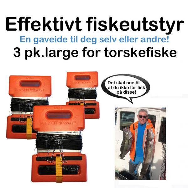 3pk.Autosett Large for sveiv