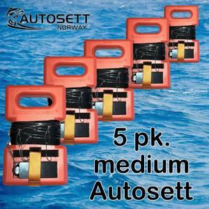 Bilde av 5 pk. Autosett medium