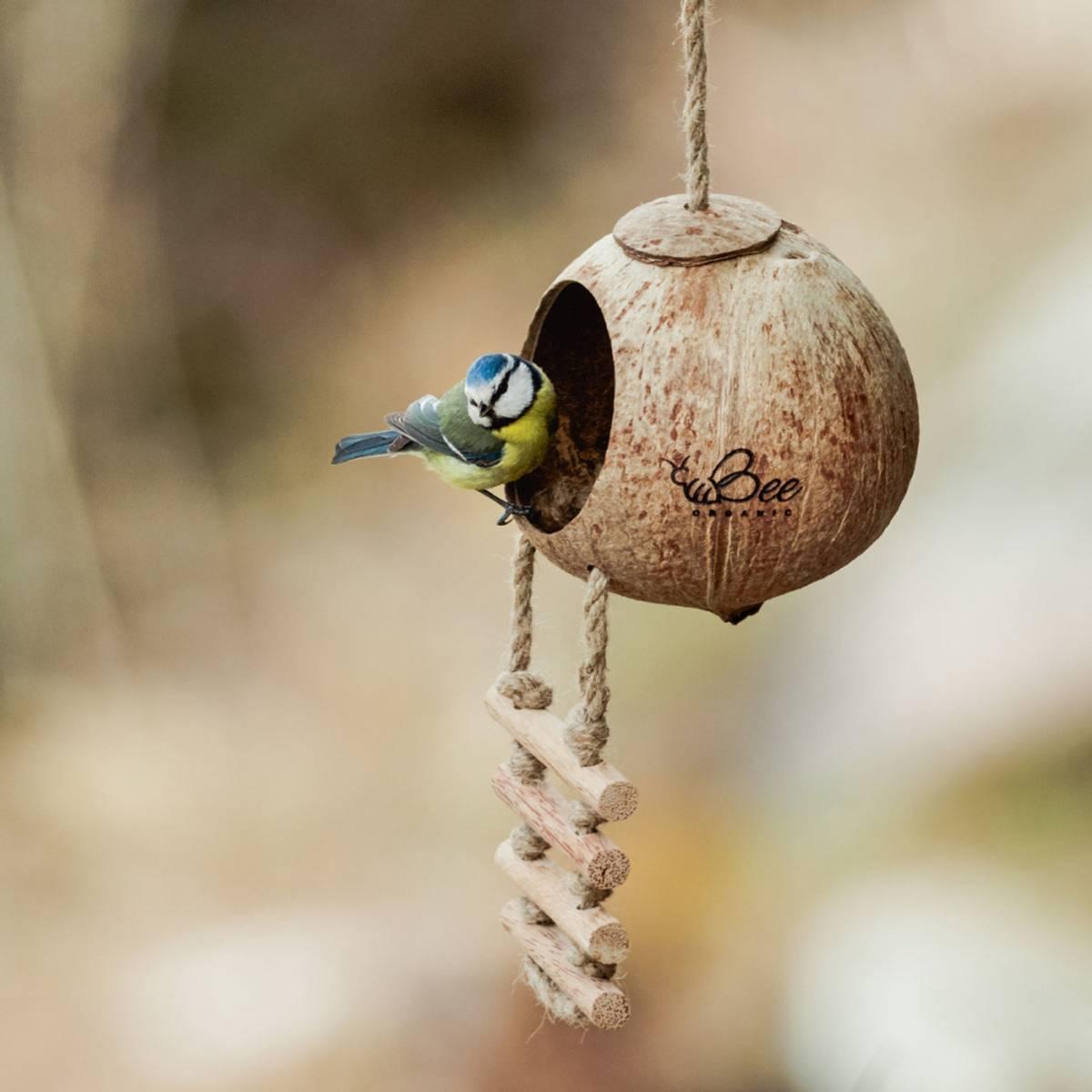 Fuglemater i kokosnøtt med stige / Beeorganic