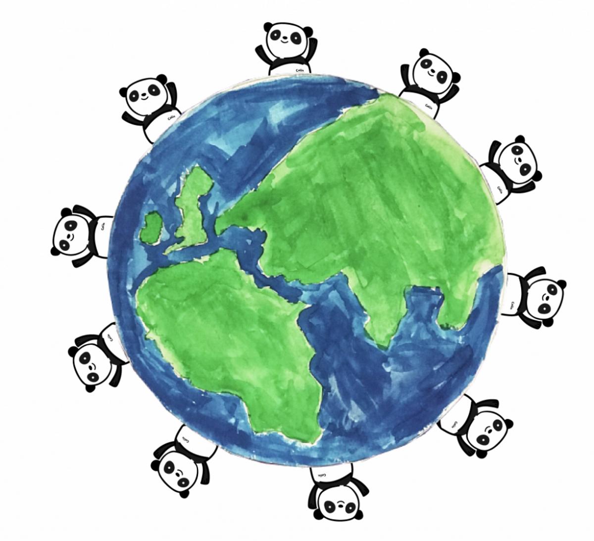 Bambus papirlommetørklær på boks / The Cheeky Panda