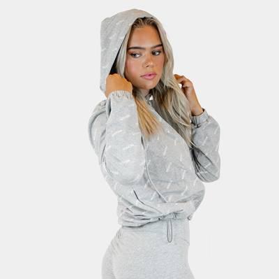 Bilde av Logo zip hoodie - gray melange
