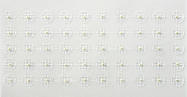 Bilde av Akupunktur ion-kuler Ginryu (sølv)