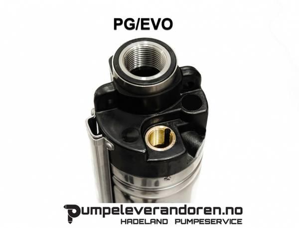 Senkepumpe PG2000 hus 1X230V