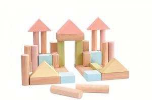 Bilde av PlanToys 40 stk byggeklosser i tre