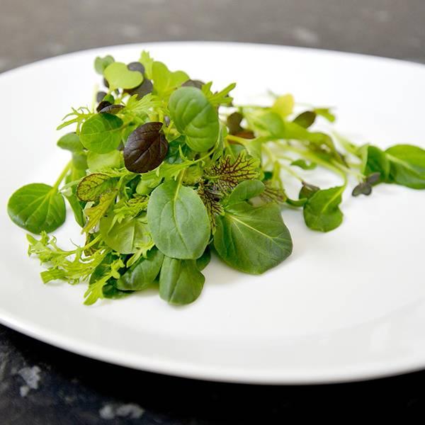 Bilde av Salatblanding 'Oriental Wonders'