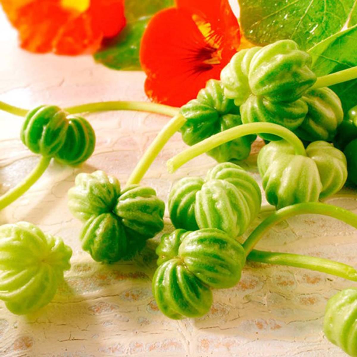 Blomkarsesalat Nasturtium Leaves Seeds