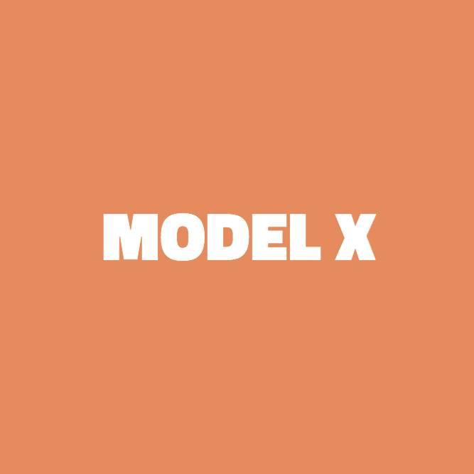 Bilde av Model X