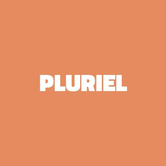 Bilde av Pluriel