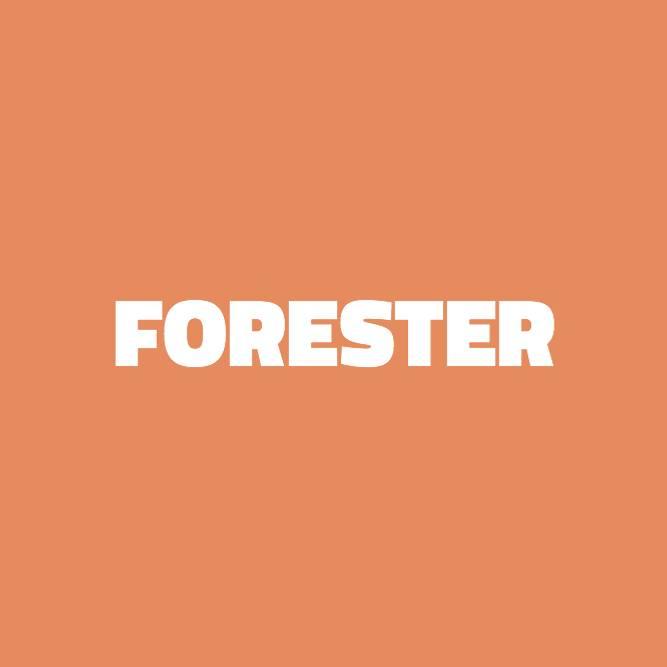 Bilde av Forester