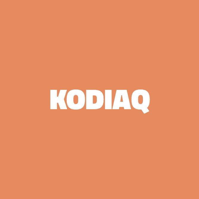 Bilde av Kodiaq