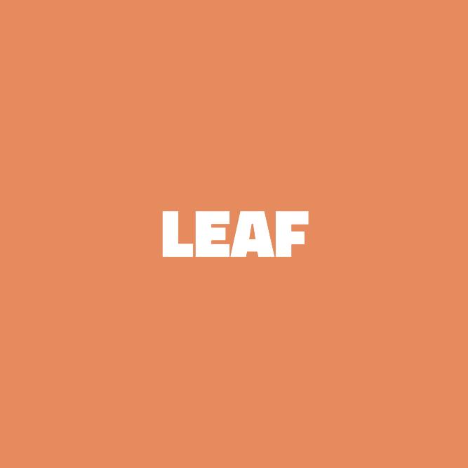 Bilde av Leaf