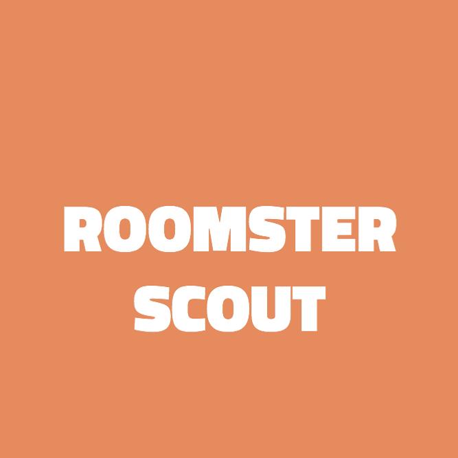 Bilde av Roomster Scout